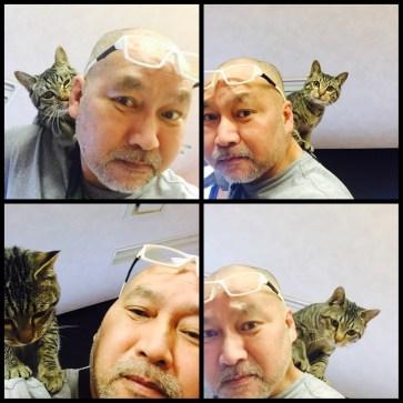 肩乗り猫 (=^ェ^=)
