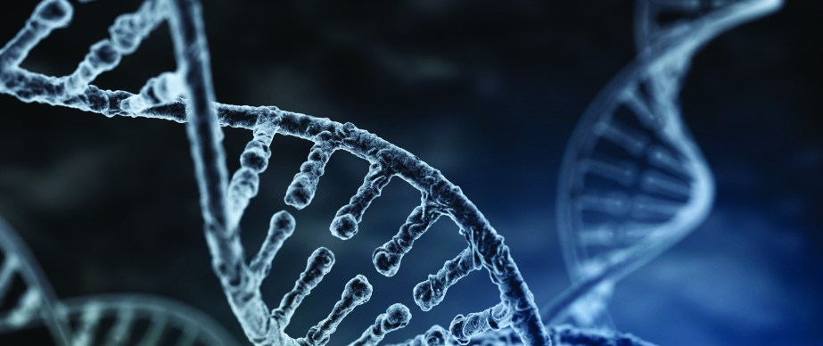 Spiral strand of DNA on the dark background