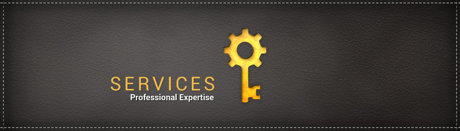 VSD Services | Professional Expertise