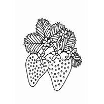Фрукты и овощи раскраски Распечатать ягоды и фрукты в