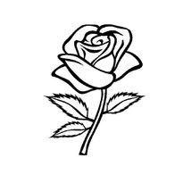 Раскраска роза цветок Распечатать картинки
