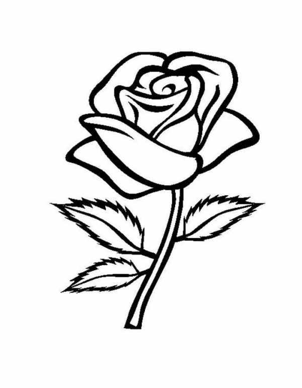 Раскраска роза цветок для детей картинки Красиво