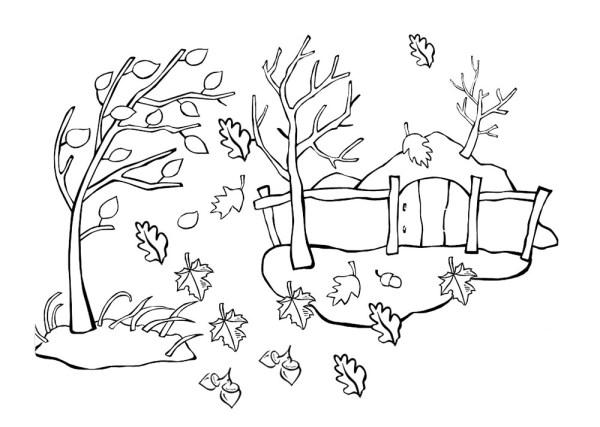 Раскраска на тему Осень Распечатать картинки для детей