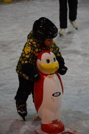 первые самостоятельные шаги на льду