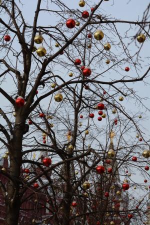 украшение деревьев на красной площади
