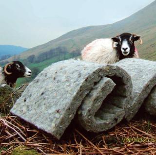Утеплитель с овечьей шерстью фото