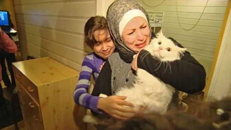 Котка обикаля света