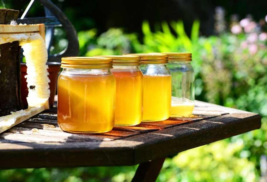 приложенията на меда