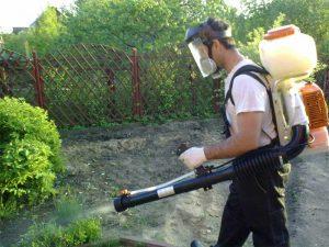 Что поливают мочевиной в весенний период на огороде, как разбавить для опрыскивания