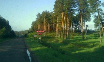 Нолинский район