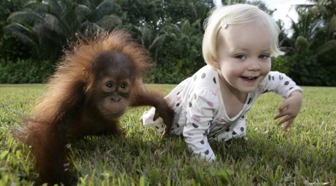Маленькие дети используют те же жесты, что и приматы