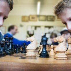 Шахматы чем эта игра так полезна для детей