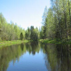 Национальный парк «Вятка» создадут в Кировской области