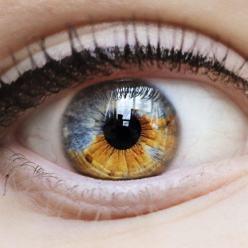 Что может рассказать о Вашем здоровье цвет глаз