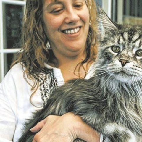 О самых известных котах из Книги Рекордов Гиннеса