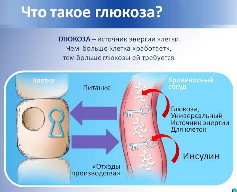 Можно ли колоть глюкозу внутривенно. Раствор глюкозы: инструкция по применению для внутривенных инфузий