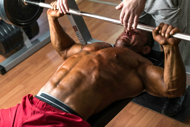Chest Muscle | Types of Muscles That You Can Bulk Up | list of muscles | dumbbell bench press