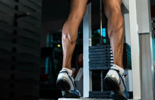 Standing Calf Raises   Ultimate Leg Day Workout   No Chicken Legs!   killer leg workout