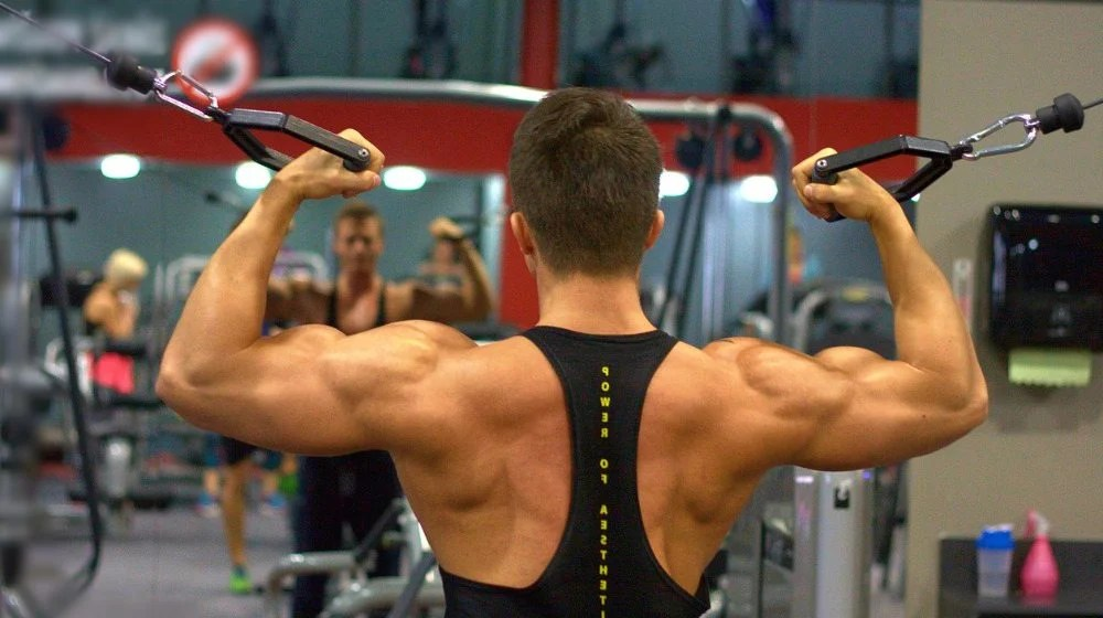 Feature | Best Back Workouts For Every Back Muscle