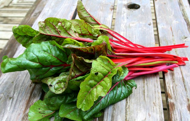 Chard | Supergreens Need To Be A Part of Your Diet. Here's Why (And How)