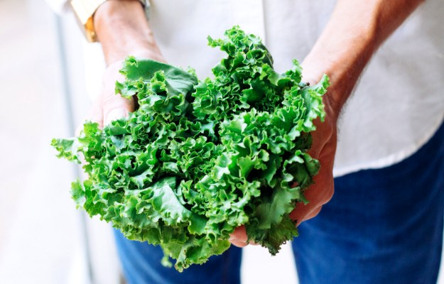 Leaf Lettuce | Supergreens Need To Be A Part of Your Diet. Here's Why (And How)
