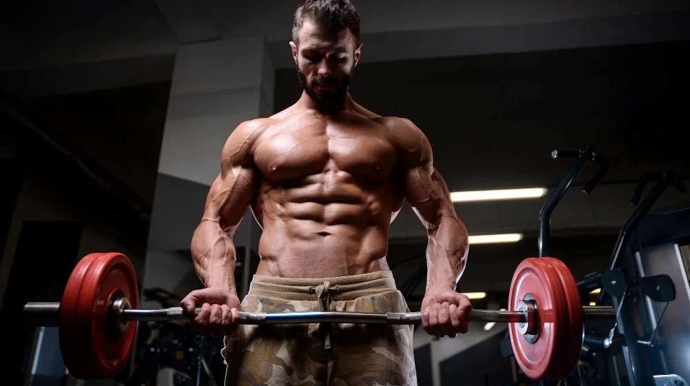 Feature | Primary Workout Routine From a Pro | V Shred Fitness