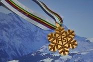 Medalja Medjunarodne smucarske organizacije ( FIS)