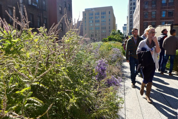 The High Line, fabulous walkway and park on an old elevated railway.