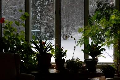 summer inside/winter outside