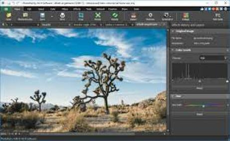 NCH PhotoPad Image Editor Pro 7.50 Crack With Registration Code 2021