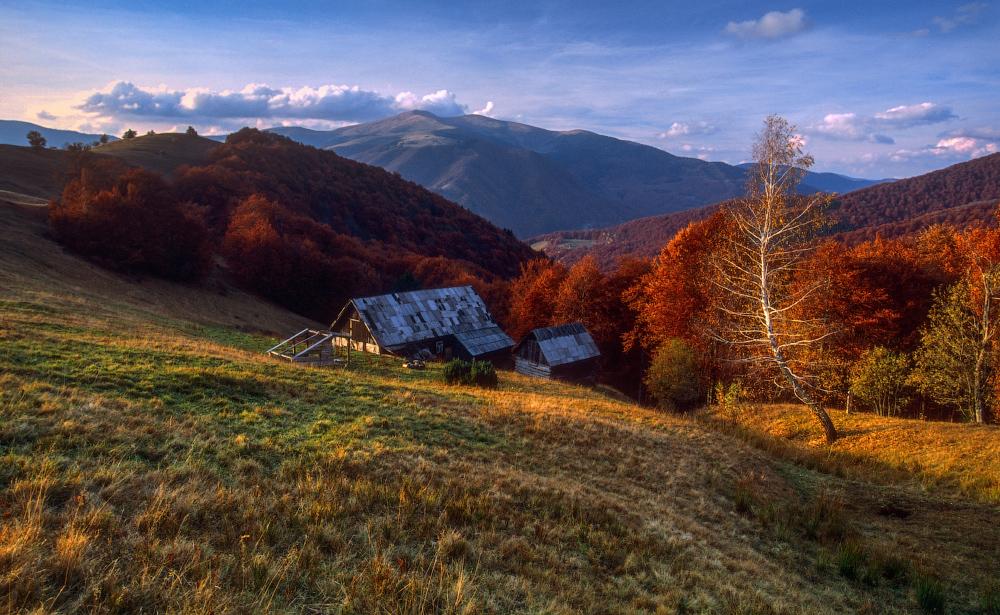 фото: Ярослав Тюрменко