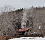 Maple researchers say Vermont syrup yields can be maintained, even as season shrinks