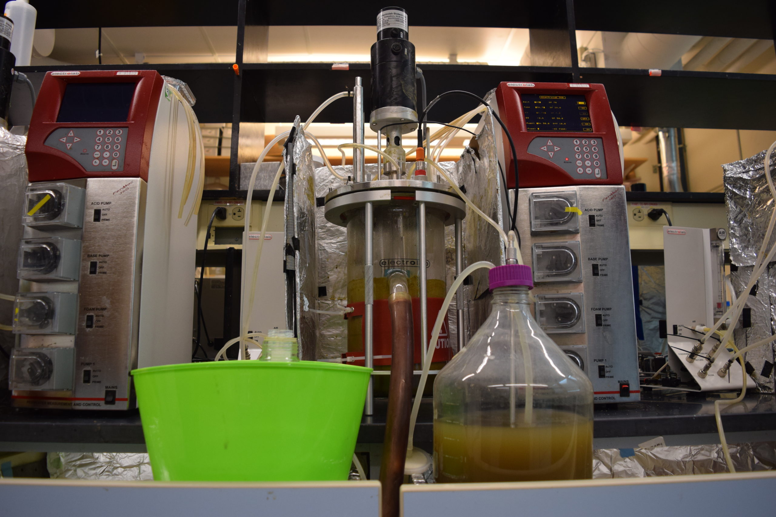 Cow seaweed research test fermenters