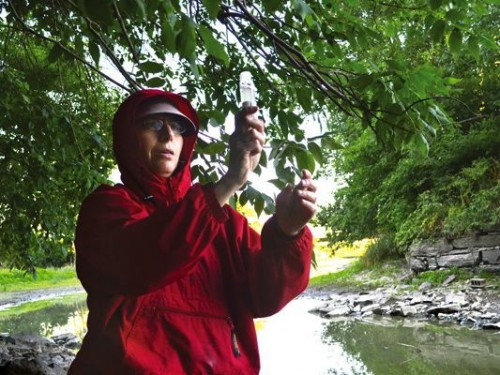 Kathy Morse, Lemon Fair River coordinator for the Addison County Riverwatch Collaborative, holds up a water sample that will be sent to a state lab to test for E. coli. Photo by Andrea Warren for the Addison Independent