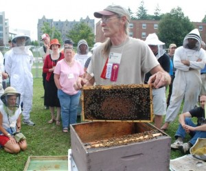 Mike Palmer, Vermont bee breeder, demonstrates splitting a hive. Photo by Audrey Clark.