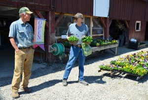 Bob Gray of 4 Corners Farm in West Newbury chats with a local customer, Roger Richards. For three decades the farm stand has sold an extensive range of fruits and vegetables to visitors who come from as far away as Montpelier for the homegrown crops and scenic setting. Photo by Andrew Nemethy