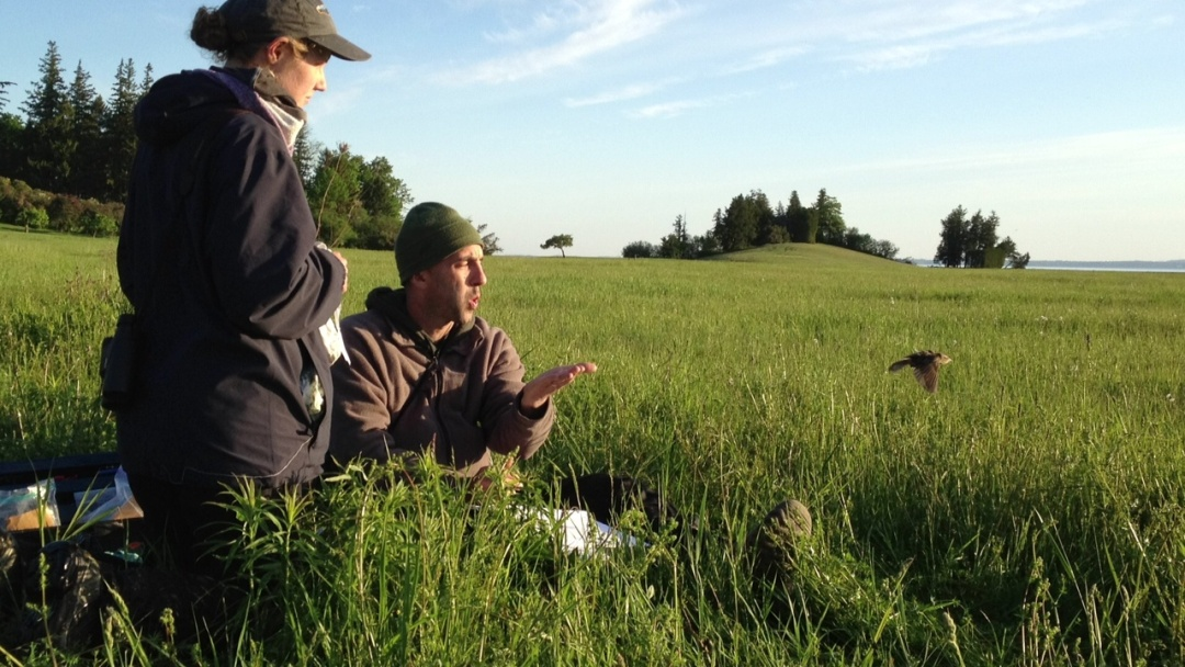Rooms: Tracking A Tiny Bird's Long Migration That Begins And Ends