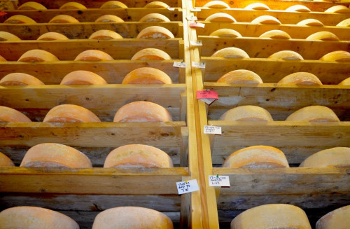 Wheels of clothbound Cabot cheddar are stacked nearly to the ceiling of a massive concrete aging cellar at Jaspar Hill Farms, where science and the cheesemaker's art are being innovatively combined to create award-winning cheeses. Photo by Andrew Nemethy
