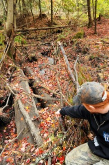 Pointing to a felled tree and his family had hoped to use as firewood, Luke Grout assesses a skidder bridge that was left in place over a stream on the property, potentially in violation of Vermont's Accepted Management Practices. Photo by Hilary Niles/VTDigger