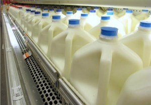 Gallons of milk at a grocery store. Creative Commons photo by bluewakiki.com via Flickr.