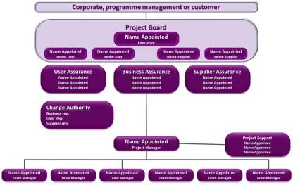 PM Team Structure