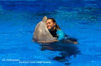 Dolphin with trainer Aqualand Tenerife