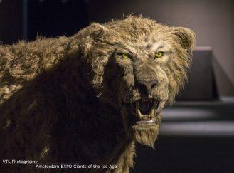 Grottenleeuw Giants of the Ice Age Amsterdam EXPO