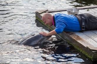 dolfijnendelta-dolfinarium