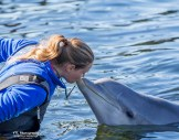 1 op 1 aandacht in de Dolfijnendelta