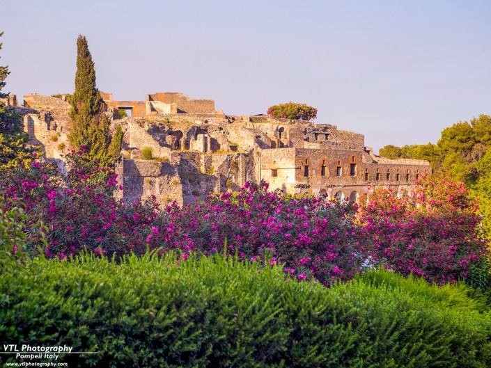 Pompeii Gallery