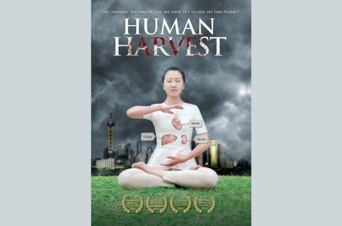 Female Falun Gong practitioner meditates wearing a white top with heart, liver, and kidney drawn on with price tags showing how much money the Chinese Communist Party makes when they kill someone and use the organs for a transplant surgery.