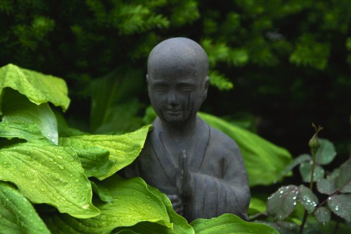 wisdom of nature represented by a black buddha statue surrounded by greenery