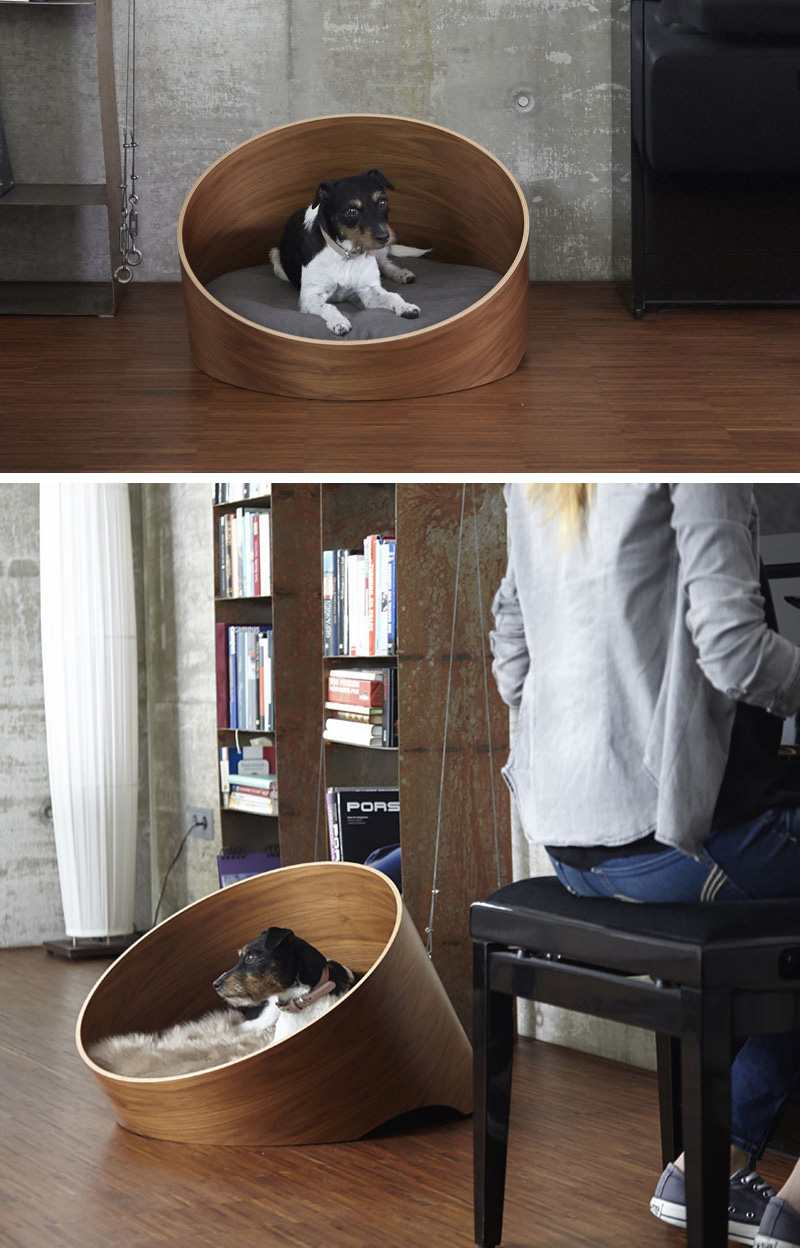 Modern Pet Bed Design Vuing Com