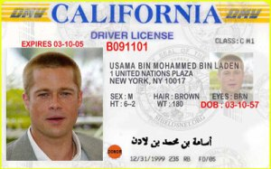 Falsifying, Altering, or Counterfeiting a Driver's License